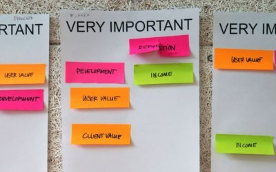 Values classified as important by workshop participants
